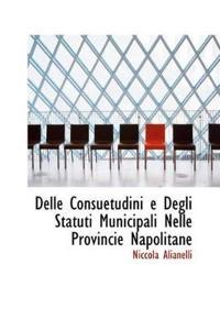Delle Consuetudini E Degli Statuti Municipali Nelle Provincie Napolitane