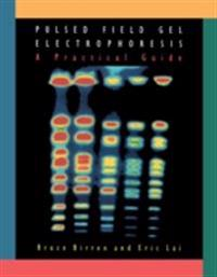 Pulsed Field Gel Electrophoresis