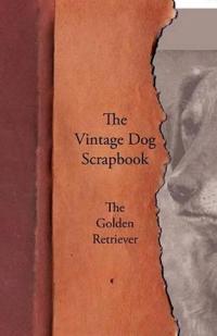 The Vintage Dog Scrapbook - The Golden Retriever