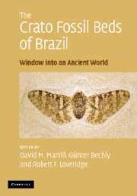 Crato Fossil Beds of Brazil