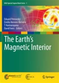 Earth's Magnetic Interior