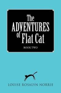 The Adventures of Flat Cat