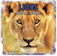 Lions - built for the hunt