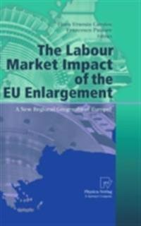 Labour Market Impact of the EU Enlargement