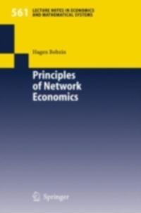 Principles of Network Economics