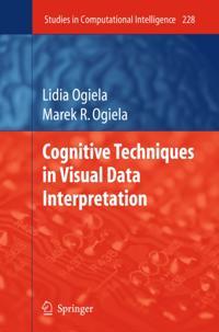 Cognitive Techniques in Visual Data Interpretation