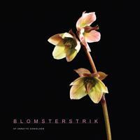 Blomsterstrik