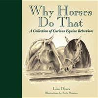 Why Horses Do That