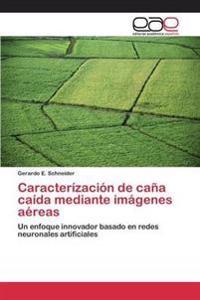 Caracterizacion de Cana Caida Mediante Imagenes Aereas
