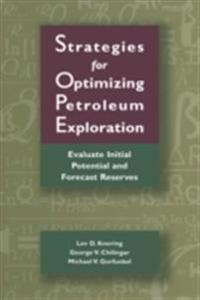Strategies for Optimizing Petroleum Exploration: