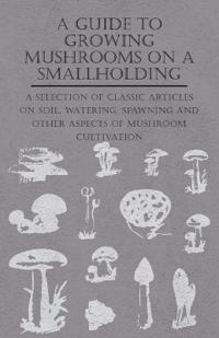 A Guide to Growing Mushrooms on a Smallholding -