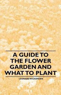 A Guide to the Flower Garden and What to Plant