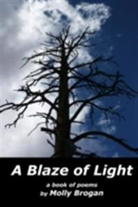 Blaze of Light: A Book of Poems