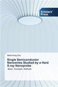 Single Semiconductor Nanowires Studied by a Hard X-Ray Nanoprobe