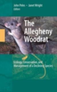 Allegheny Woodrat