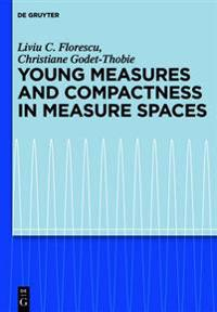Young Measures and Compactness in Measure Spaces
