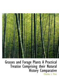 Grasses and Forage Plants a Practical Treatise Comprising Their Natural History Comparative