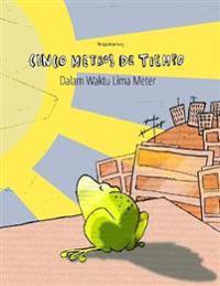 Cinco Metros de Tiempo/Dalam Waktu Lima Meter: Libro Infantil Ilustrado Espanol-Indonesio (Edicion Bilingue)