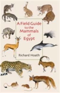 Field Guide to the Mammals of Egypt
