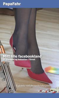 Mitt Lille facebookland