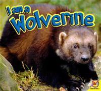 I Am a Wolverine