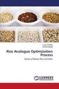 Rice Analogue Optimization Process