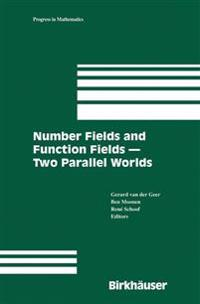 Number Fields And Function Fields
