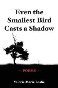 Even the Smallest Bird Casts a Shadow