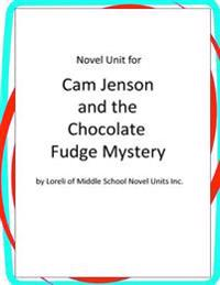 Novel Unit for CAM Jansen and the Chocolate Fudge Mystery