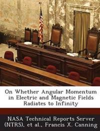 On Whether Angular Momentum in Electric and Magnetic Fields Radiates to Infinity