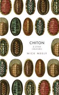 Chiton & Other Creatures