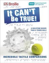 DK Braille It Can't Be True!