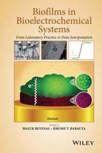 Biofilms in Bioelectrochemical Systems