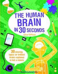 Human Brain in 30 Seconds