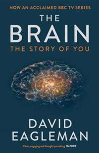 Brain - the story of you