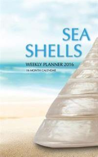 Sea Shells Weekly Planner 2016: 16 Month Calendar