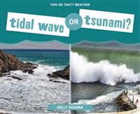 Tidal Wave or Tsunami?