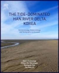 Tide-Dominated Han River Delta, Korea