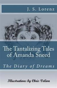 The Tantalizing Tales of Amanda Sneed: The Diary of Dreams