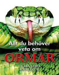 Allt du behöver veta om ormar och andra kräldjur