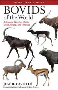 Bovids of the World