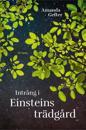 Intrång i Einsteins trädgård : en far, en dotter, ingentings mening och alltings början