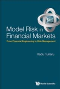Model Risk In Financial Markets: From Financial Engineering To Risk Management