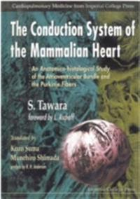 Conduction System Of The Mammalian Heart, The: An Anatomico-histological Study Of The Atrioventricular Bundle And The Purkinje Fibers