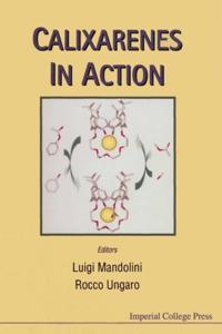 CALIXARENES IN ACTION