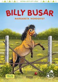 Billy busar - Margareta Nordqvist - böcker (9789163887543)     Bokhandel