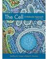 THE CELL A MOLECULAR APPROACH 7E PI