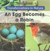 An Egg Becomes a Robin