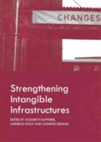 Strengthening Intangible Infrastructures