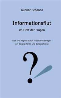 Informationsflut Im Griff Der Fragen